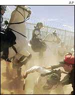Australian mounted police tackle protesters